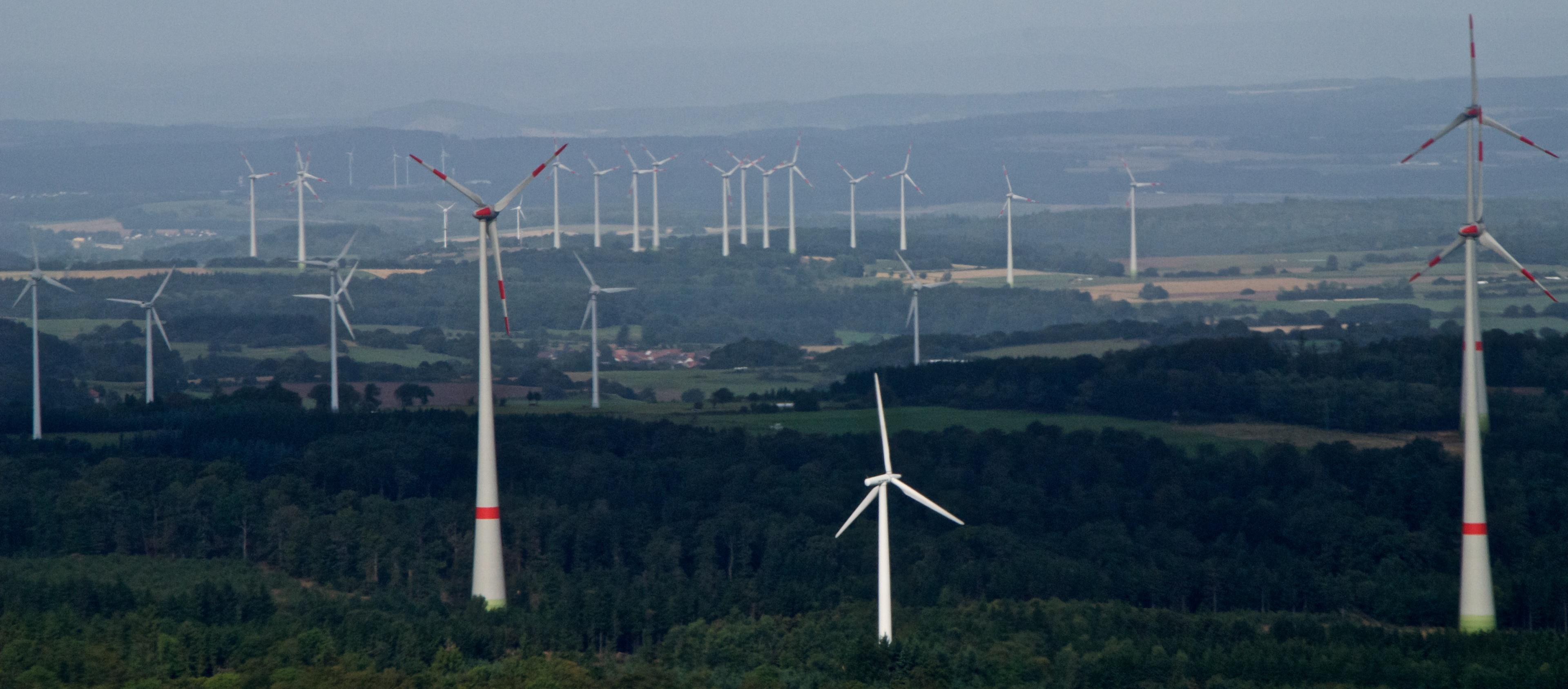 Dreiarmige Banditen in Windpark bei Ulrichstein