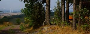Windwahn, egal wohin man schaut: Platte bei Ober-Seibertenrod (Ulrichstein, Vogelsberg) - Foto: Hermann Dirr, Gegenwind Vogelsberg, Gruppe Engelrod